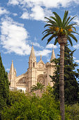 Cathedral of Santa Maria, also La Seu. Palm Cathedral is one of the main attractions of the Balearic Islands. A beautiful building of Gothic culture.