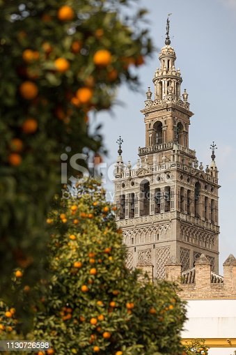 Cathedral of Seville and orange tree, La Giralda, Andalusia, Spain