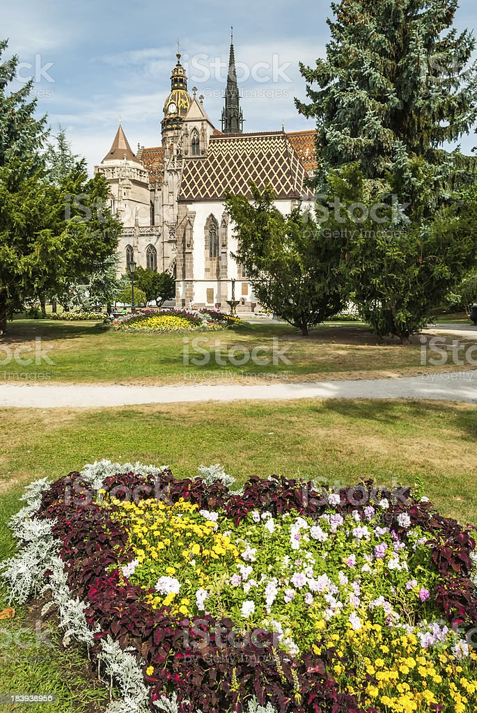 Cathedral of St. Elizabeth with garden royalty-free stock photo