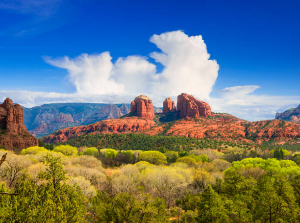 cathedral rock near sedona - red rocks stock pictures, royalty-free photos & images