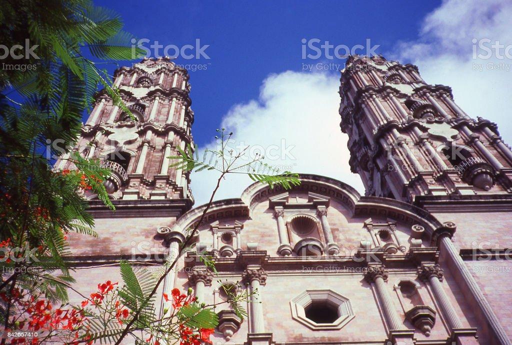 Cathedral spires and flowers in Coatzacoalcos Veracruz Mexico stock photo