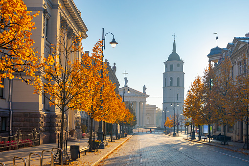 Cathedral square seen from Gediminas Avenue, the main street of Vilnius, Lithuania, a popular shopping and dining location