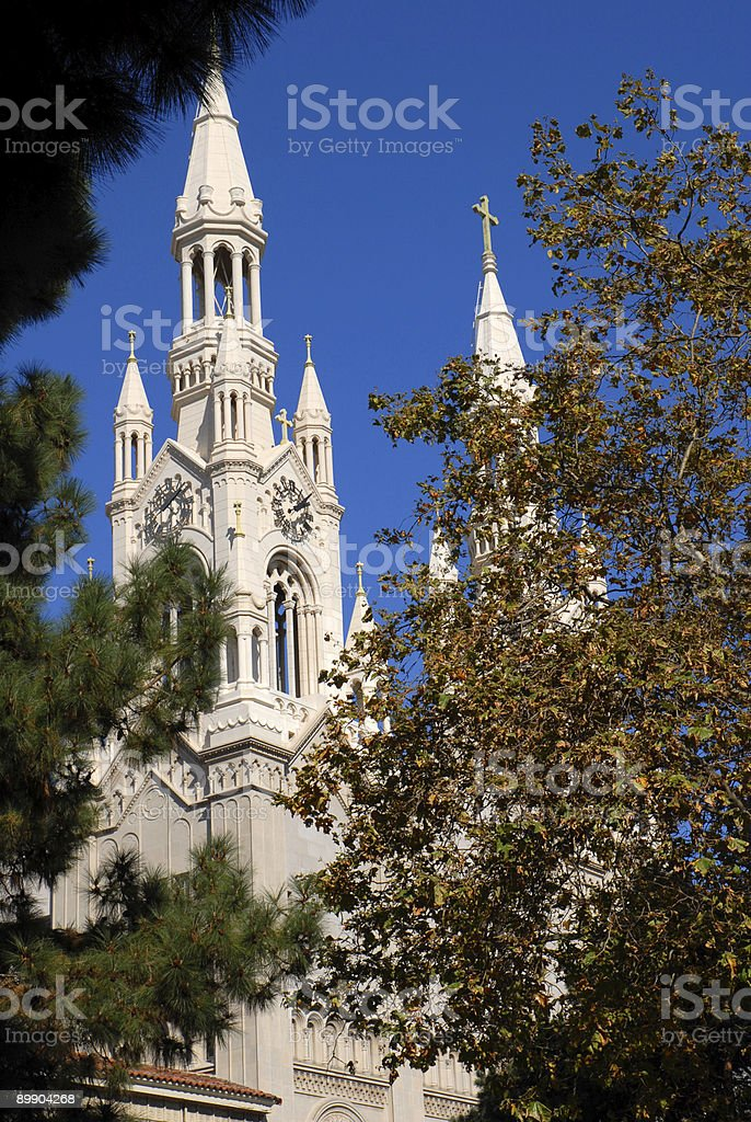 Cathedral Through Trees royalty-free stock photo