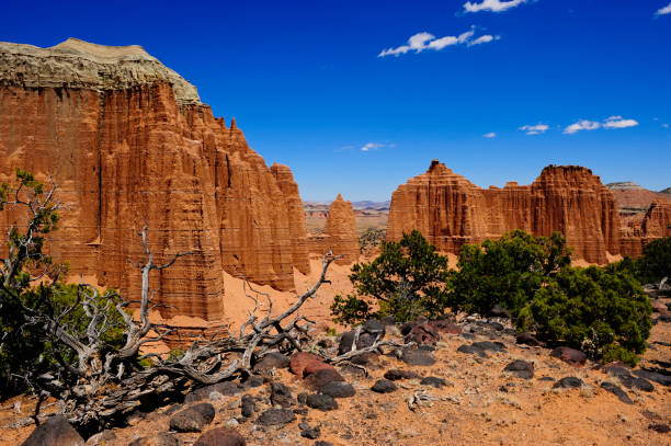 Cathedral Wash Bright blue sky and red rocks in  Cathedral Wash, Capital Reef National Park entrada sandstone stock pictures, royalty-free photos & images