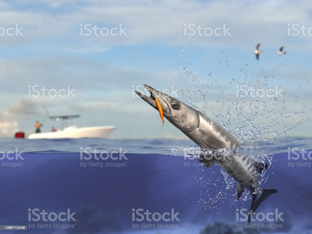 Cathing barracuda fish, fisherman in sport fishing boat holding big game fishing rod and reel 3d render stock photo
