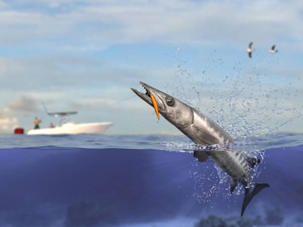 Barracuda cathing peixes, pescador em barco de pesca esporte segurando a vara de pescar grande jogo e render 3d do carretel - foto de acervo