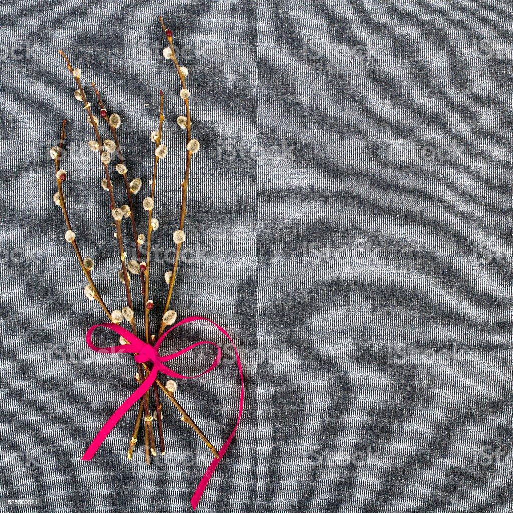 catkins bouquet stock photo