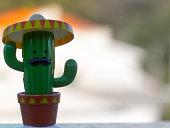 Cato Green mariacho