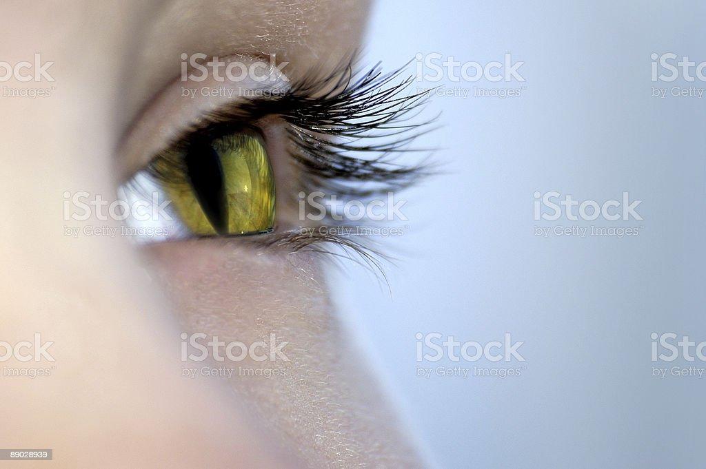 cat's eye. royalty-free stock photo