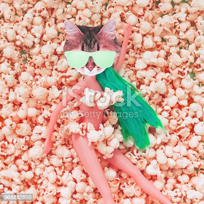 istock cat's face with sunglasses instead of the head of the doll lies among the popcorn 968882810