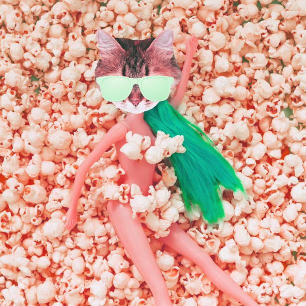 katzengesicht mit sonnenbrille statt den kopf der puppe liegt unter dem popcorn - neon partylebensmittel stock-fotos und bilder