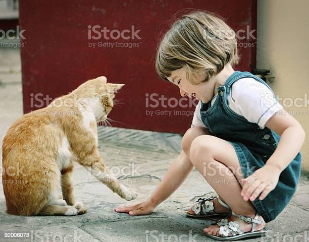 Cats picture id92006073?b=1&k=6&m=92006073&s=612x612&h=2rpwa4trijmezkf1xmzwsor sa9hwcjb37eskcan ns=