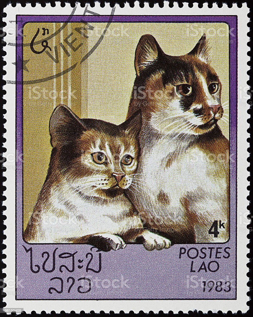 Cats stamp royalty-free stock photo