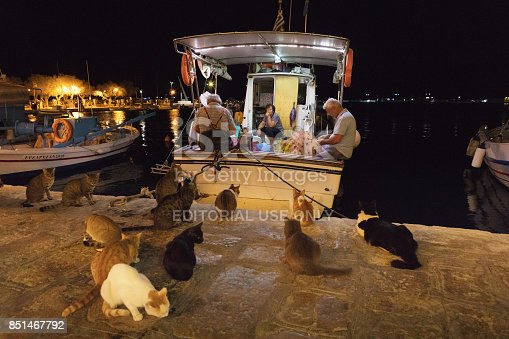 Pythagoreio is a small town and former municipality on the island of Samos, North Aegean, Greece. The stray cats in Greece were, by and large, community cats, generally cared for by the people in the neighborhood. People in the Image are local fishermen of Samos.