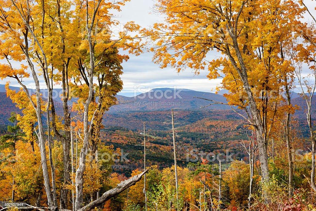 Catskill Mountain Autumn stock photo