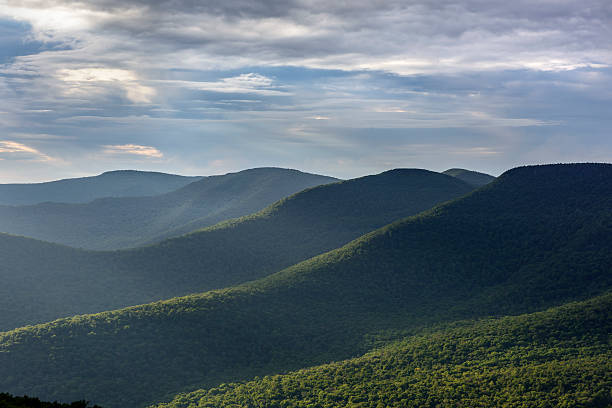 Catskill Mountains in Summer Westerly view of the Catskill Mountains from Overlook Mountain in New York State catskill mountains stock pictures, royalty-free photos & images