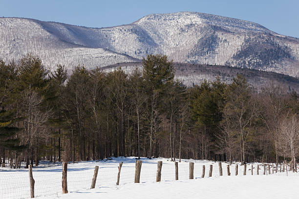 Catskill Mountains in Winter This early morning mountain scene is a great representation of the Catskill Mountains in the Winter. The fence leads you in to the forest and distant mountain backdrop.Here are some other winter scenes: catskill mountains stock pictures, royalty-free photos & images