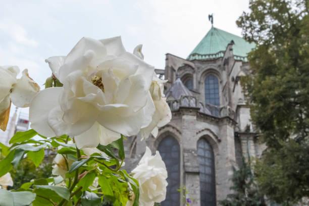 Cattedrale Notre-Dame di Chartres - Chiesa in Francia - Foto di stock immagine - foto stock