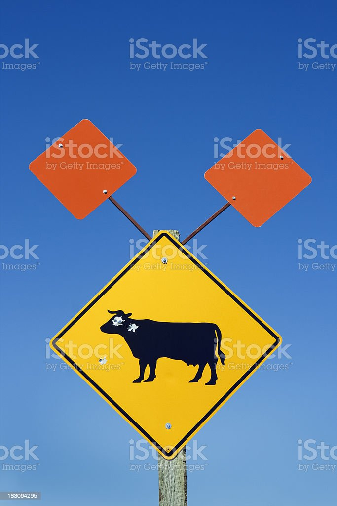 Cattle Crossing Warning Sign with Bullet Holes, Target Practice Vandalism royalty-free stock photo