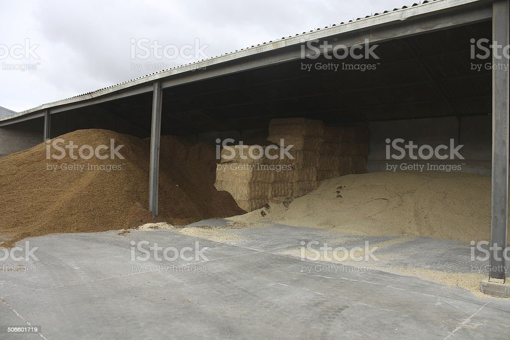 Cattle Feed In Modern Storage Barn Stock Photo & More