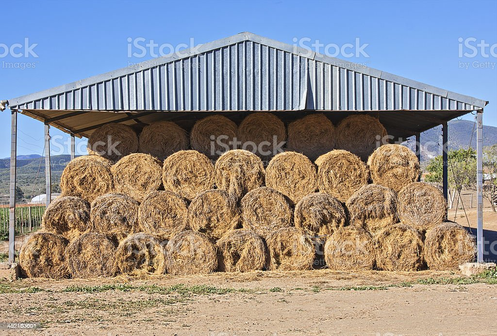 Cattle feed is stored under a corrugated metal roof. royalty-free stock photo
