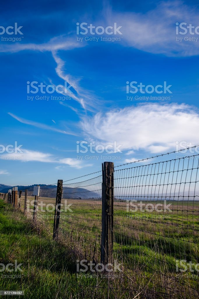 Cattle Fence stock photo