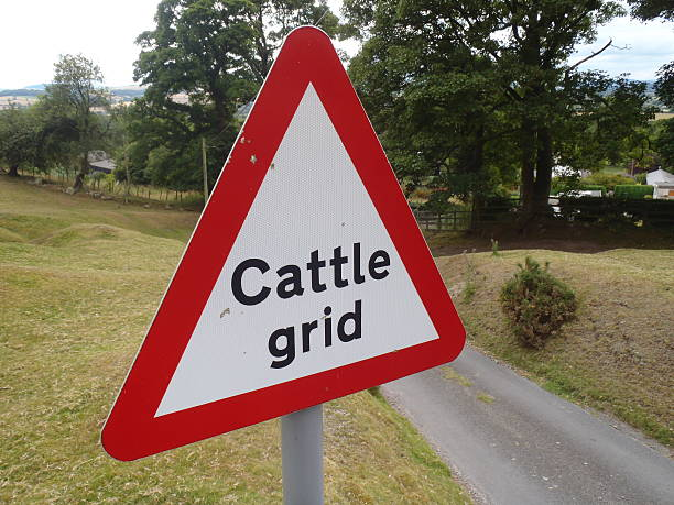 Cattle Grid Warning stock photo