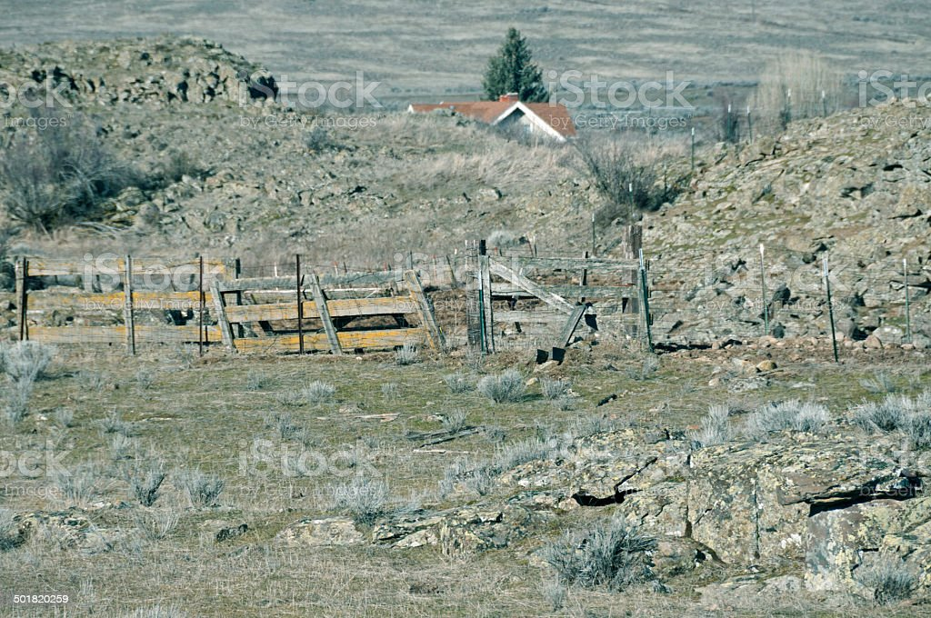 Cattle Ranch On Rocky Land In Eastern Washington State Stock