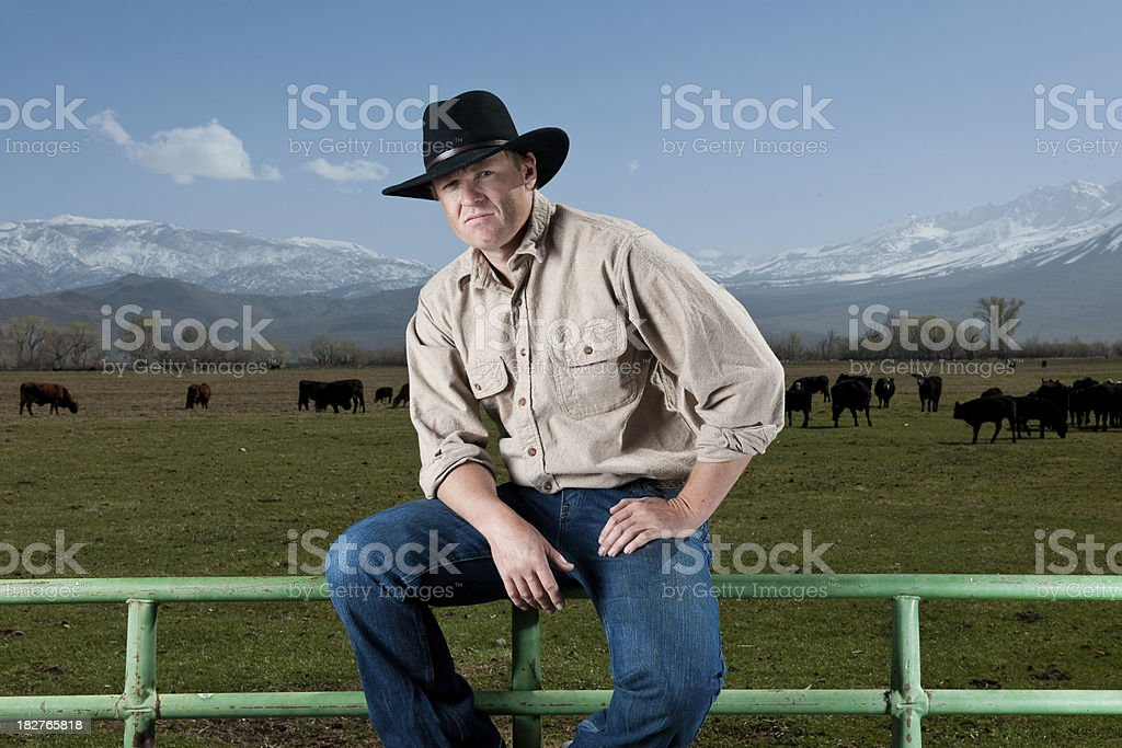 Cattle Rancher royalty-free stock photo