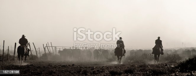 Western, Rugged, Cattle, Round Up, Cowboys, Horse Back, Dusty, Silhouette, Herding, Ranchers, Wranglers