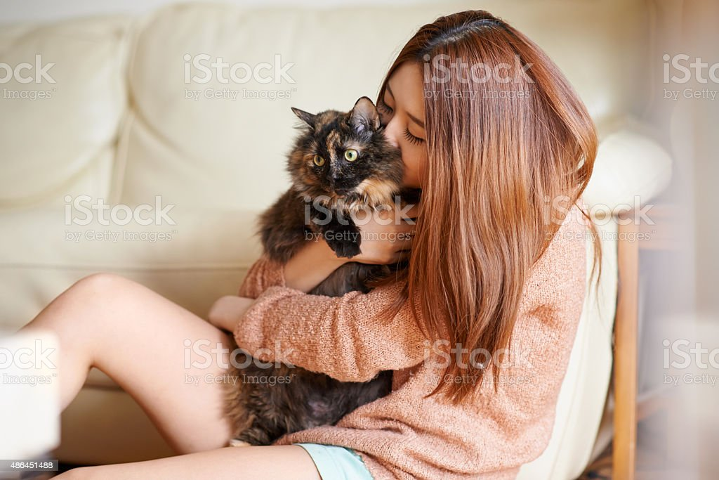 Caturday is my favorite day of the week stock photo