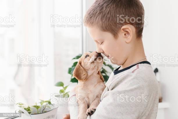Caucasian boy holding english cocker spaniel puppy picture id1074261080?b=1&k=6&m=1074261080&s=612x612&h=pqapct mc8d1wfhuwvdthftdd0vouh22m4z8benijiy=