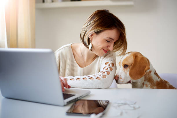 Caucasian businesswoman playing with dog picture id849172402?b=1&k=6&m=849172402&s=612x612&w=0&h=lvldy ygprqktdum3smlmmjcefjhahcjklaytj ovde=
