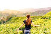 Girl with wanderlust in a tea plantation during the sunset in malaisia. No limits