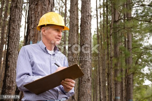 istock Caucasian man, hardhat. Forester, builder. Studying environmental conservation burned forest. 157318179