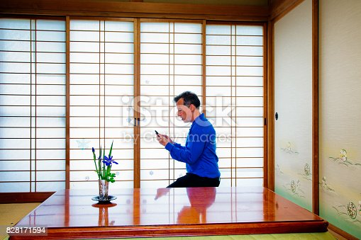 profile shot of a kneeling Caucasian man in using mobile phone in Japanese room.
