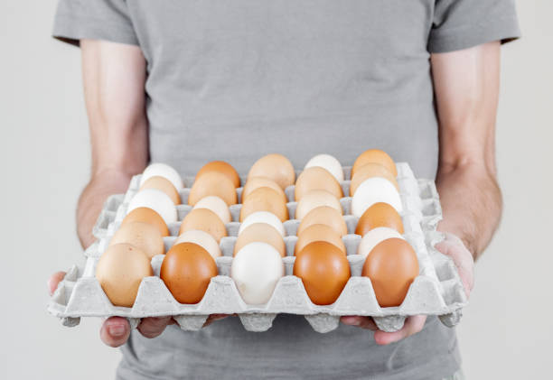 Caucasian man with gray tshirt holding a cardboard egg box full of chicken eggs stock photo