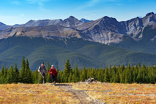 Caucasian senior couple hiking in the mountains Caucasian senior woman and man hiking in the mountains of the mountain with walking poles. Picture was taken during the Jumpingpound Mountain hike in Kananaskis Country,Alberta,Canada. kananaskis country stock pictures, royalty-free photos & images