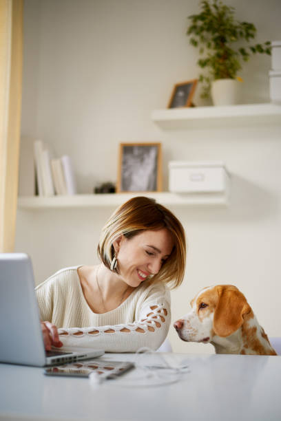 Caucasian woman and her dog sitting at home office picture id857337824?b=1&k=6&m=857337824&s=612x612&w=0&h=hf93idf  tqqd9b ufwnhihola7dumaewiaq8c9iqvg=