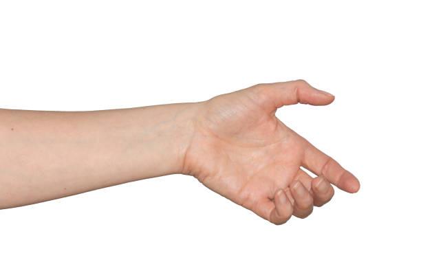 kaukasische vrouw lege hand alsof je iets vasthoudt. geïsoleerd. - menselijke arm stockfoto's en -beelden