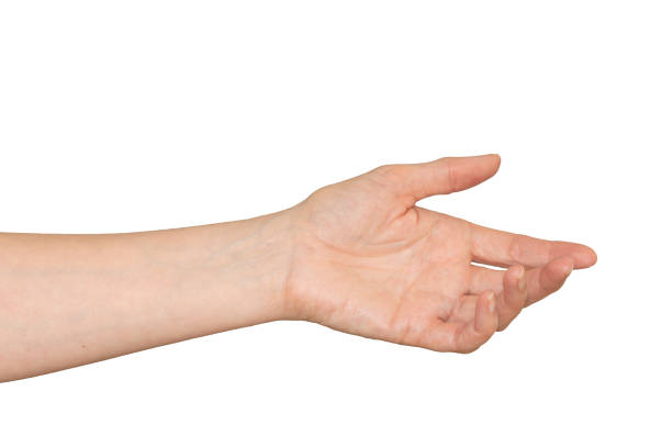 Caucasian woman's hand in outstretched helpful caring gesture. Isolated. stock photo