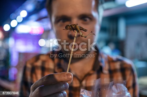 istock Caucasian young male eating cricket at night market in Thailand. 873907646