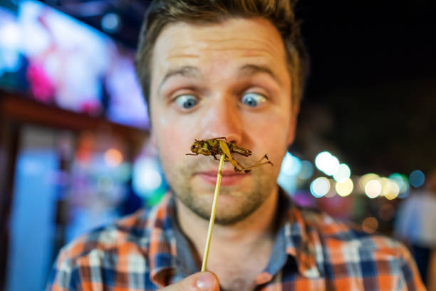 Caucasian young male eating cricket at night market in Thailand. Caucasian young male eating cricket at night market in Thailand. Eating insect concept exoticism stock pictures, royalty-free photos & images