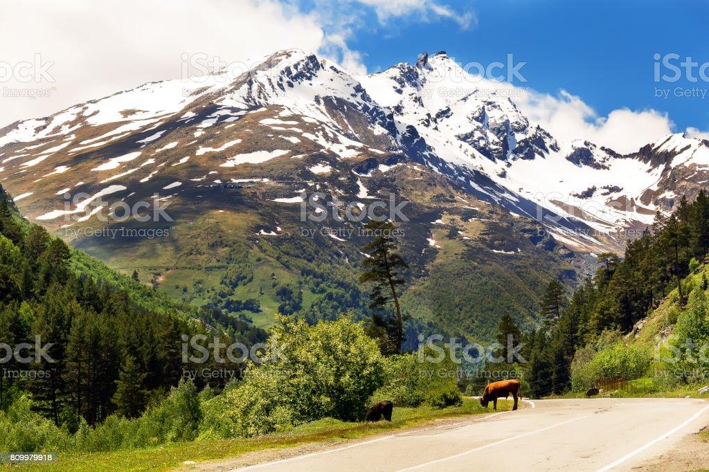Caucasus mountains in Russia stock photo