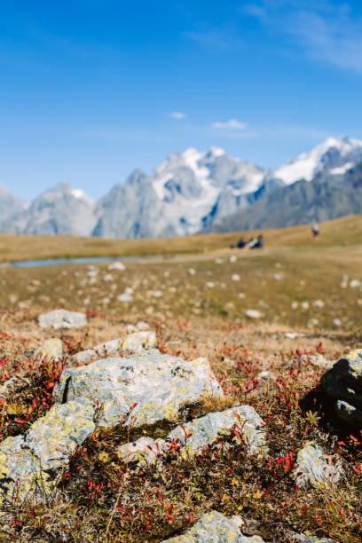 Kaukasusgebirge Landschaft mit verschwommenen Menschen im Hintergrund – Foto