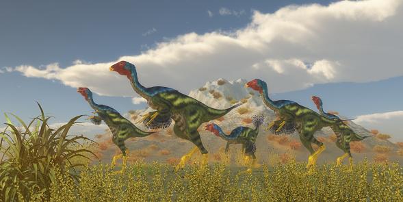 Caudipteryx Dinosaur Flock Stock Photo - Download Image Now