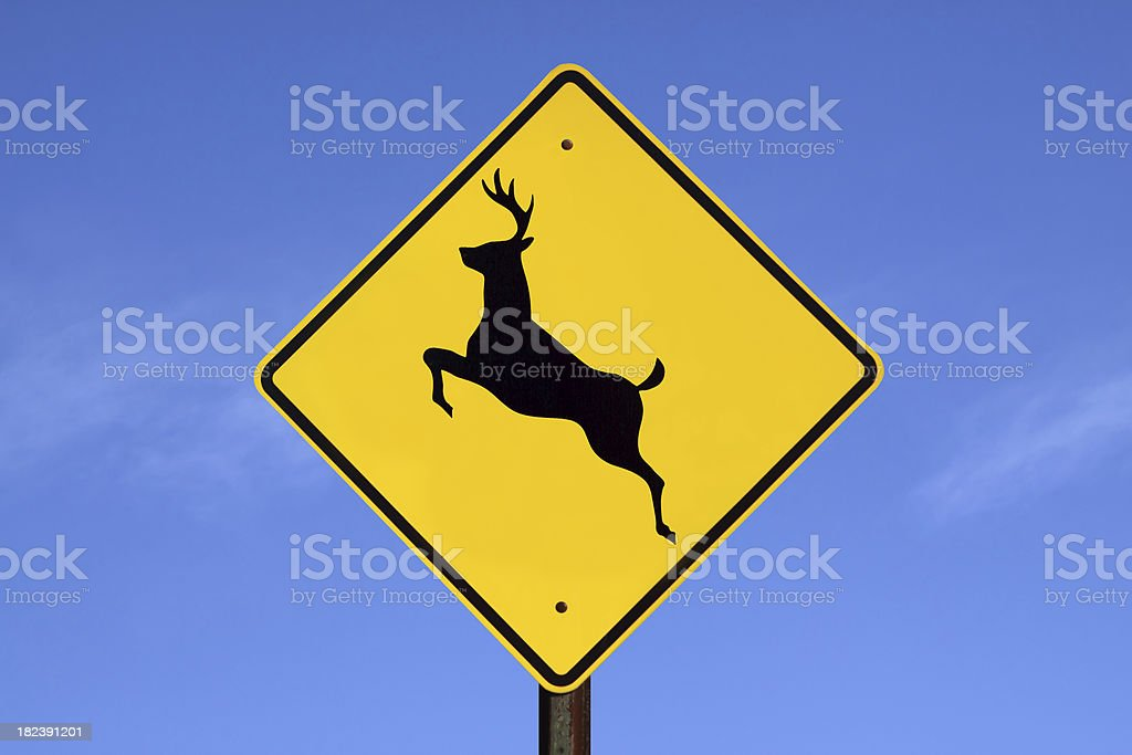 Caution! Deer Crossing royalty-free stock photo