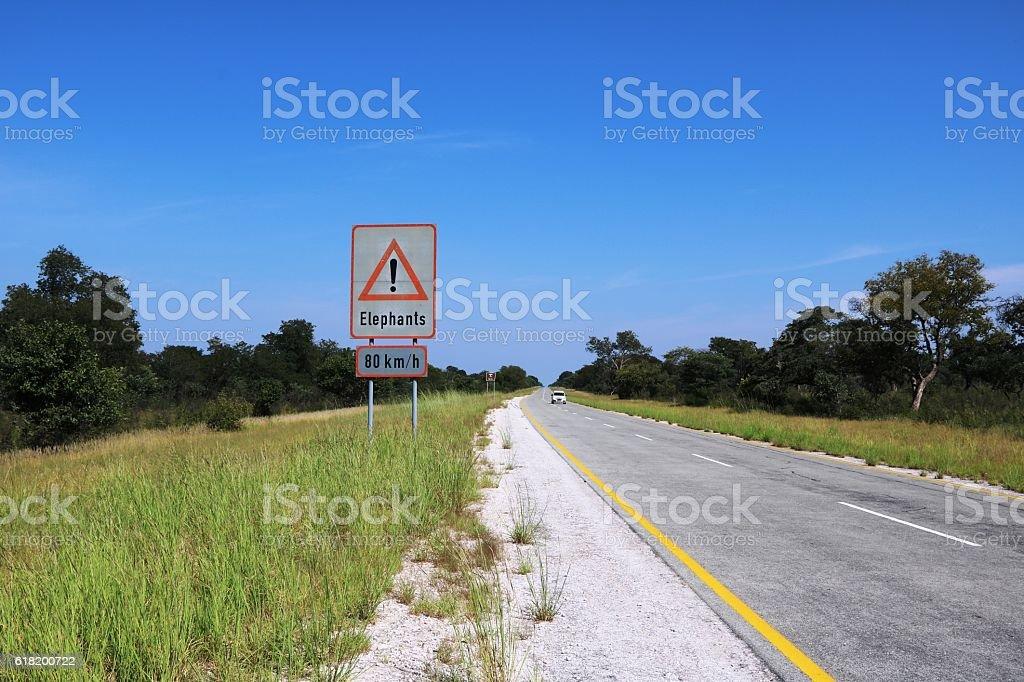 Caution Elephants! - Top speed 80 km/h Botswana, Africa - Photo