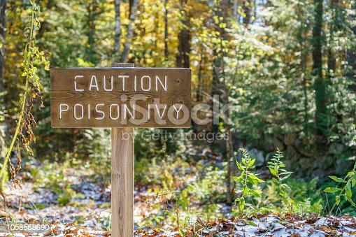 Brown sign with the words Caution Poison Ivy in a forest setting
