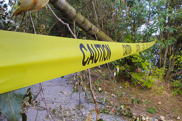 Caution Tape Strong winds have toppled a tree that has fallen across a walking path where caution tape has been hung to warn pedestrians.  knocked down stock pictures, royalty-free photos & images